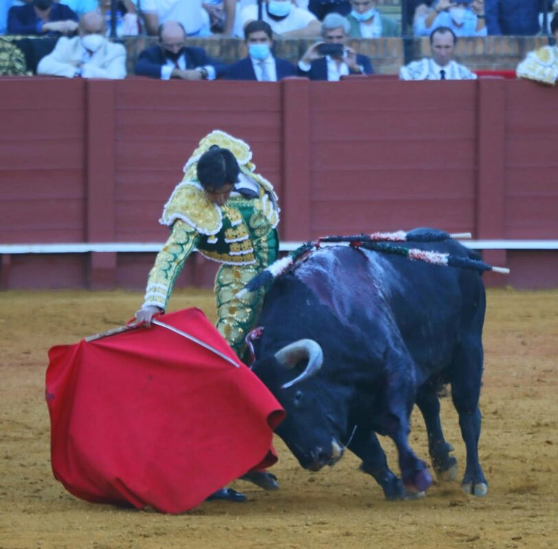 25 Sevilla Maestranza Perera Derechazo
